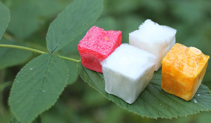 Plant-based aerogels with minimal environmental impact could