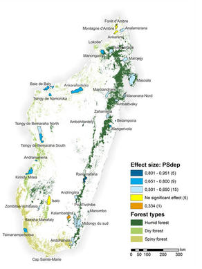 Forest types and Protected Areas in Madagascar