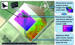 Scanning bird nests by drones