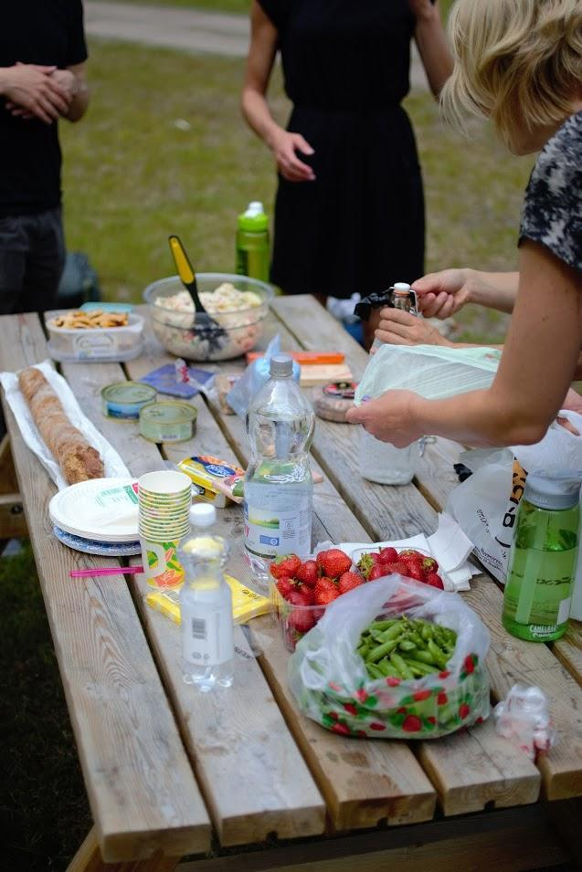 ABRU picnic on Isosaari