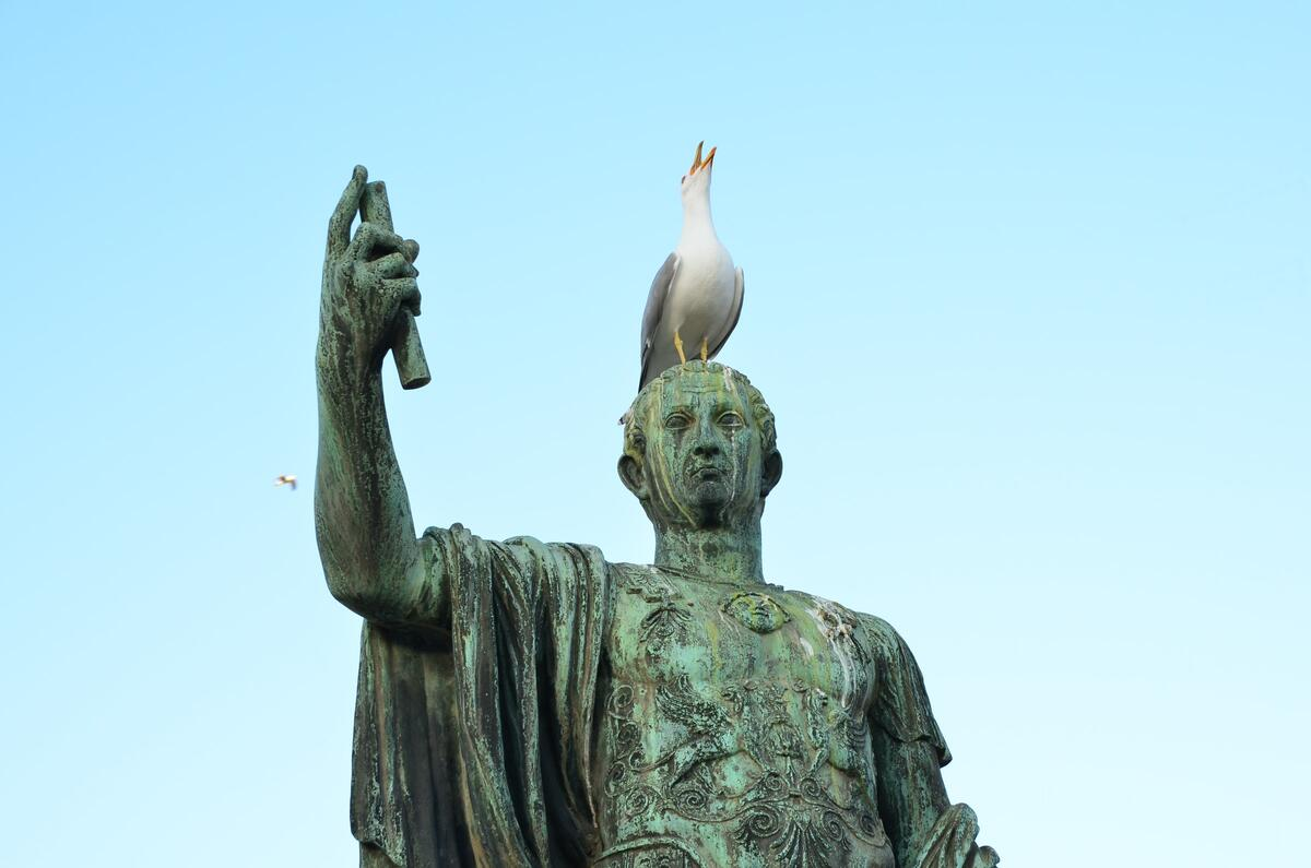 Statue with a seagull sitting on its head.
