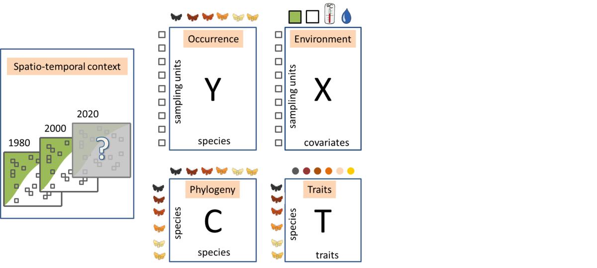 Hierarchical Modelling of Species Communities