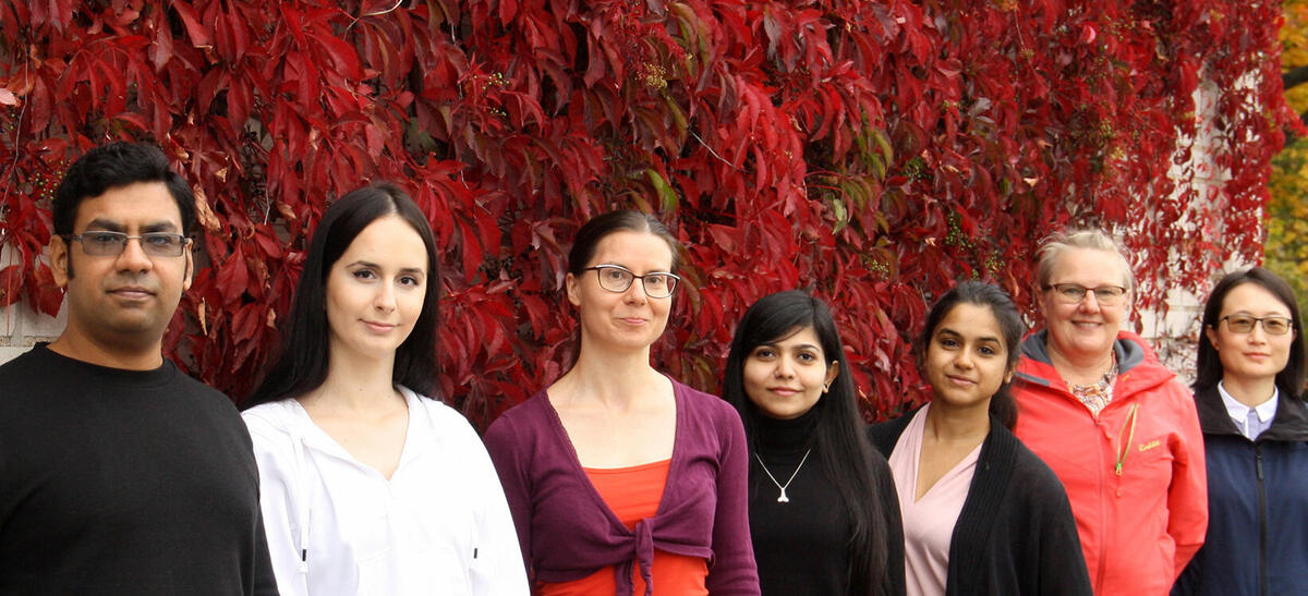 Plant-Virus Interactions research group members
