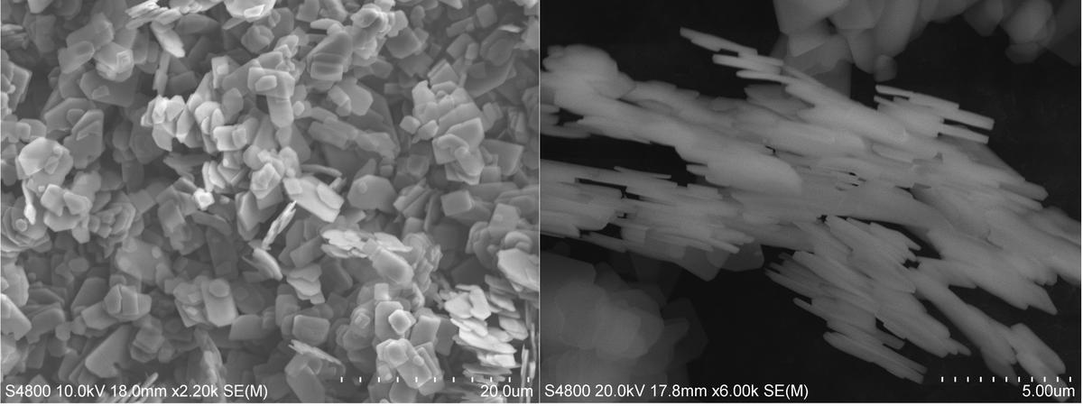 SEM-picture of TiP materials used as ion exchanger.