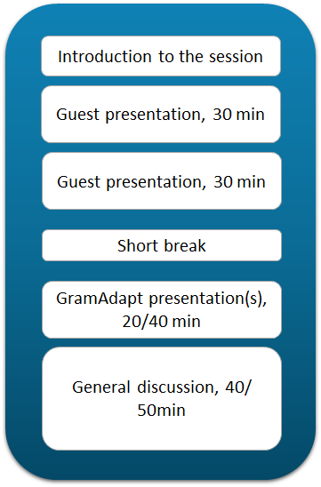 Outline of the seminar sessions structure