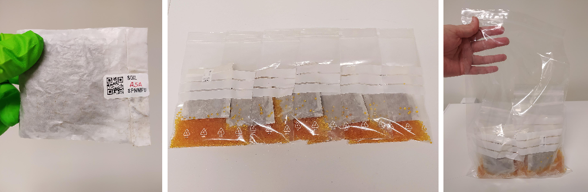 Soil samples packed in labelled paper bags, then placed in ziploc bags, and then all bags inside another ziploc bag. Project Lifeplan, University of Helsinki.