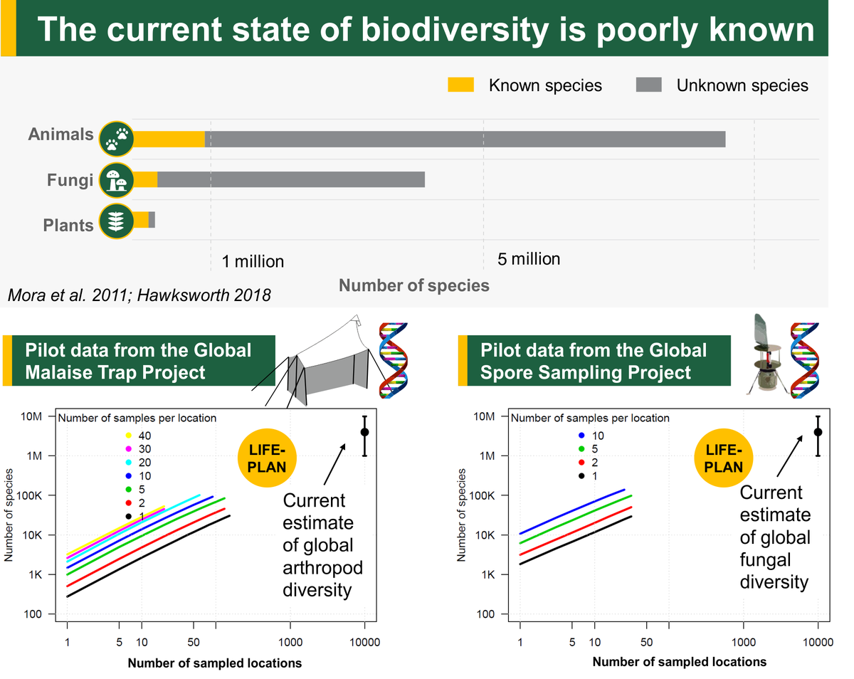 Lifeplan - Current state of biodiversity knowledge in animals, plants and fungi. Charts of expected numbers of species found in LIFEPLAN.