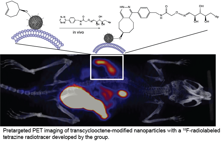 Pretargeting of PSi nanoparticles in vivo with a 18F-tetrazine radiotracer