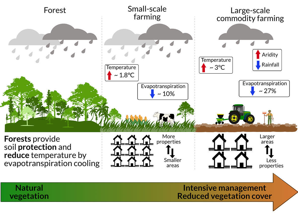 Tropical forests act as a water pump