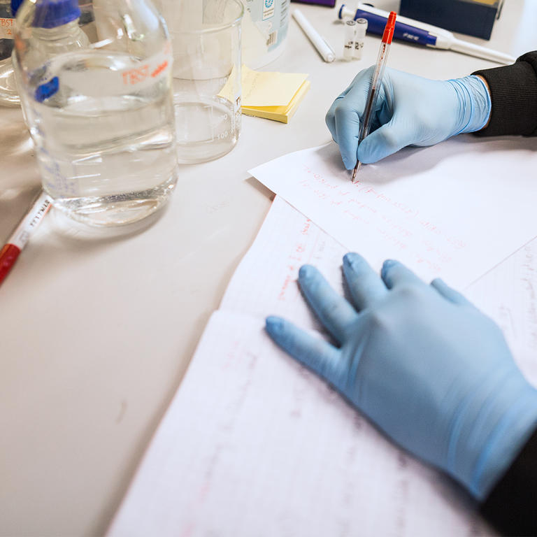 Person with rubber gloves working with research