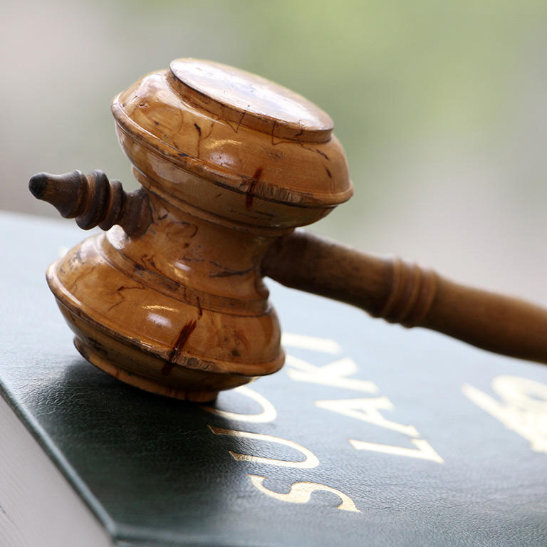 Gavel on the Statute book