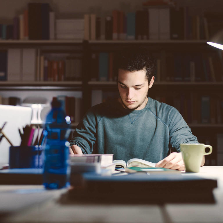 University of Helsinki Scholarship Programme. Photo of student working.