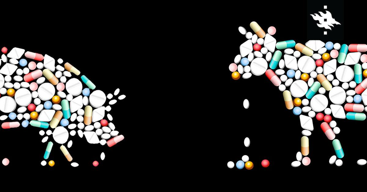 Antibiotics – the End of the World or a Revolution