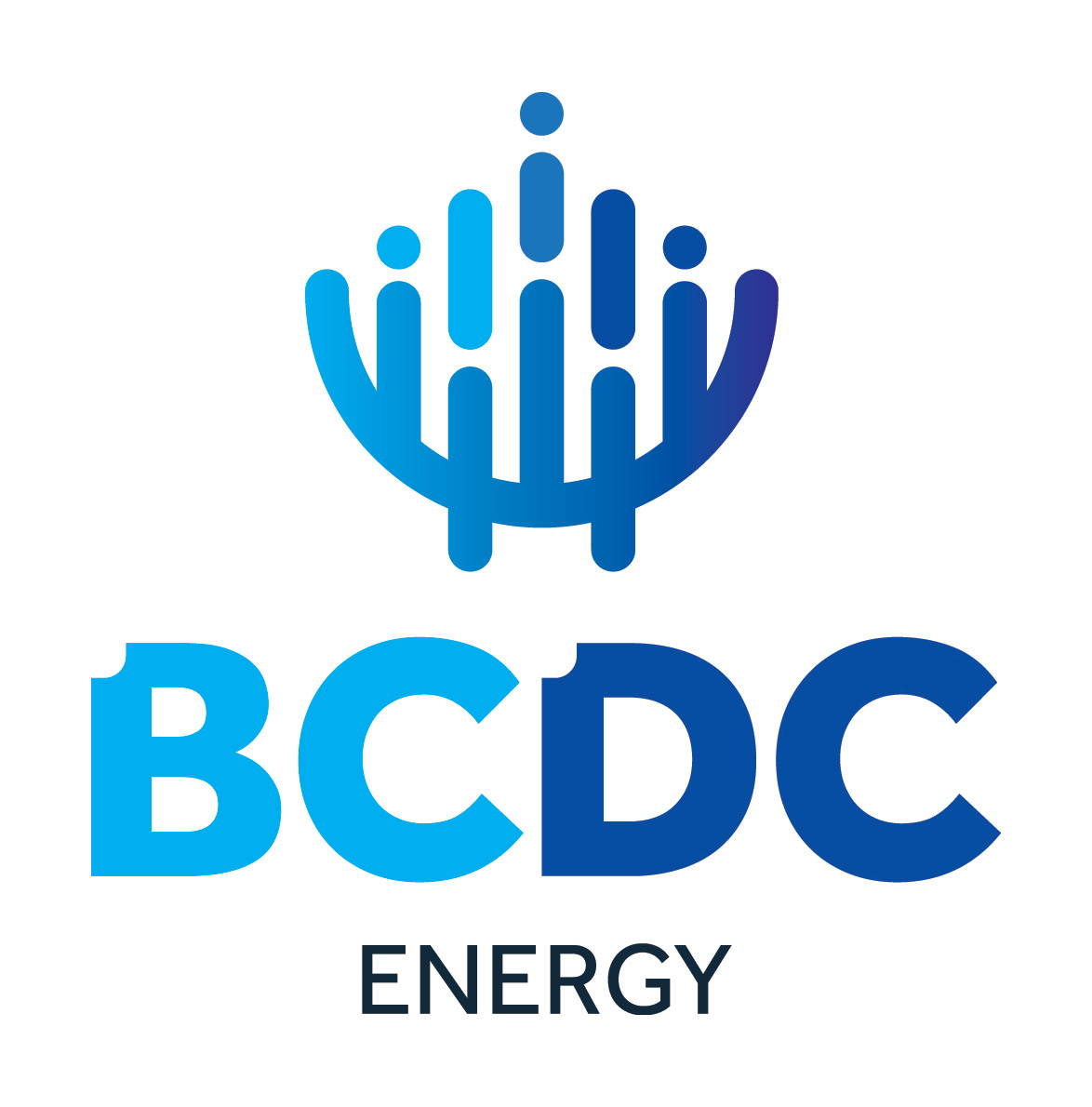 rc_cone_picture_logo_bcdc