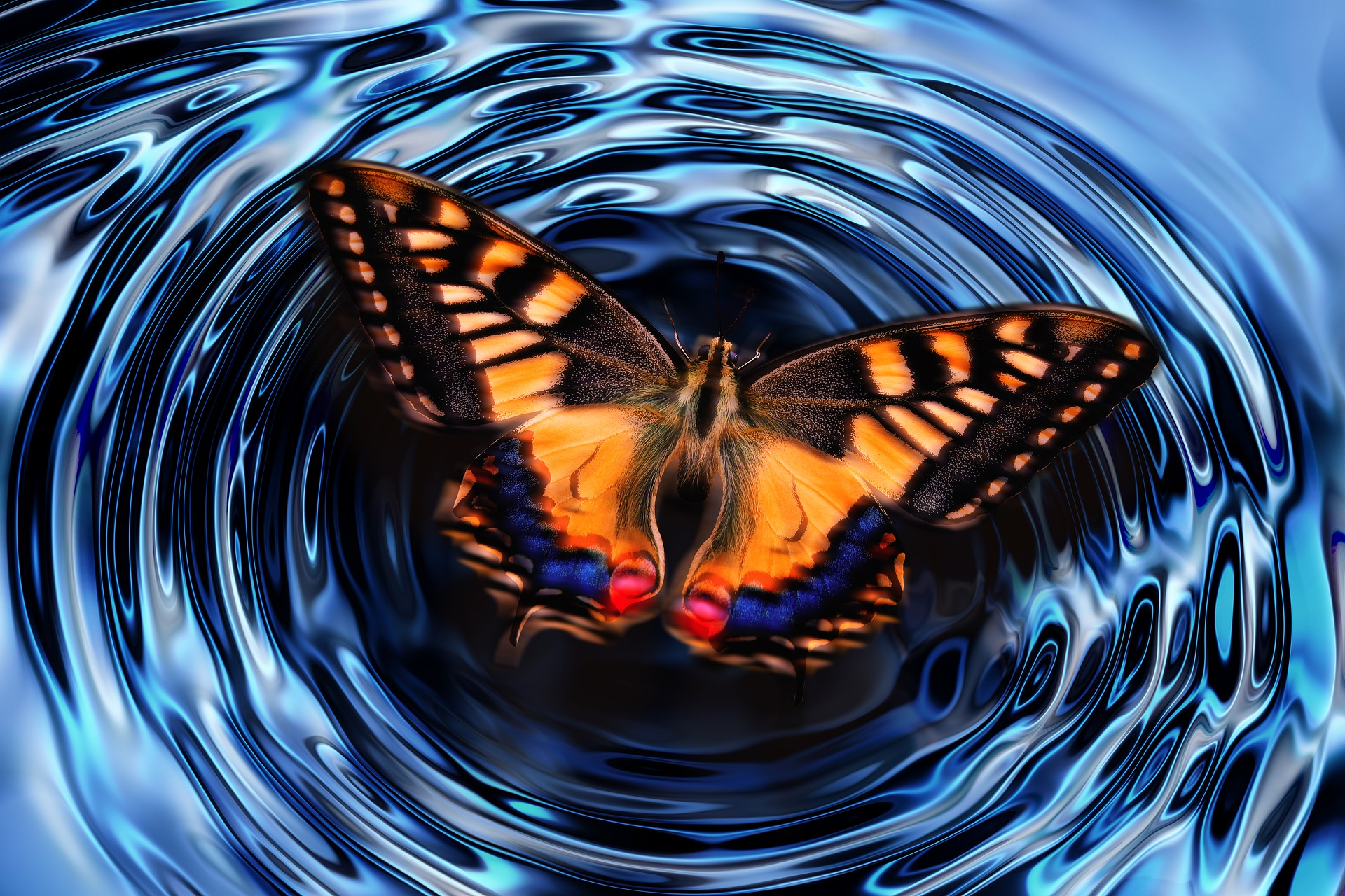 Butterfly making waves on the water.