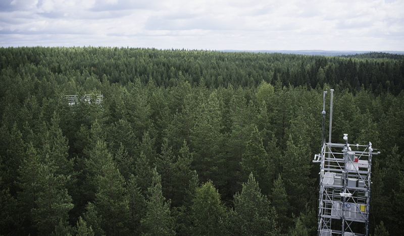Hyytiälä Forestry Field Station