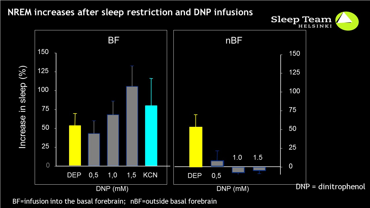 Effect of energy depletion in the BF and outside on sleep homeostasis