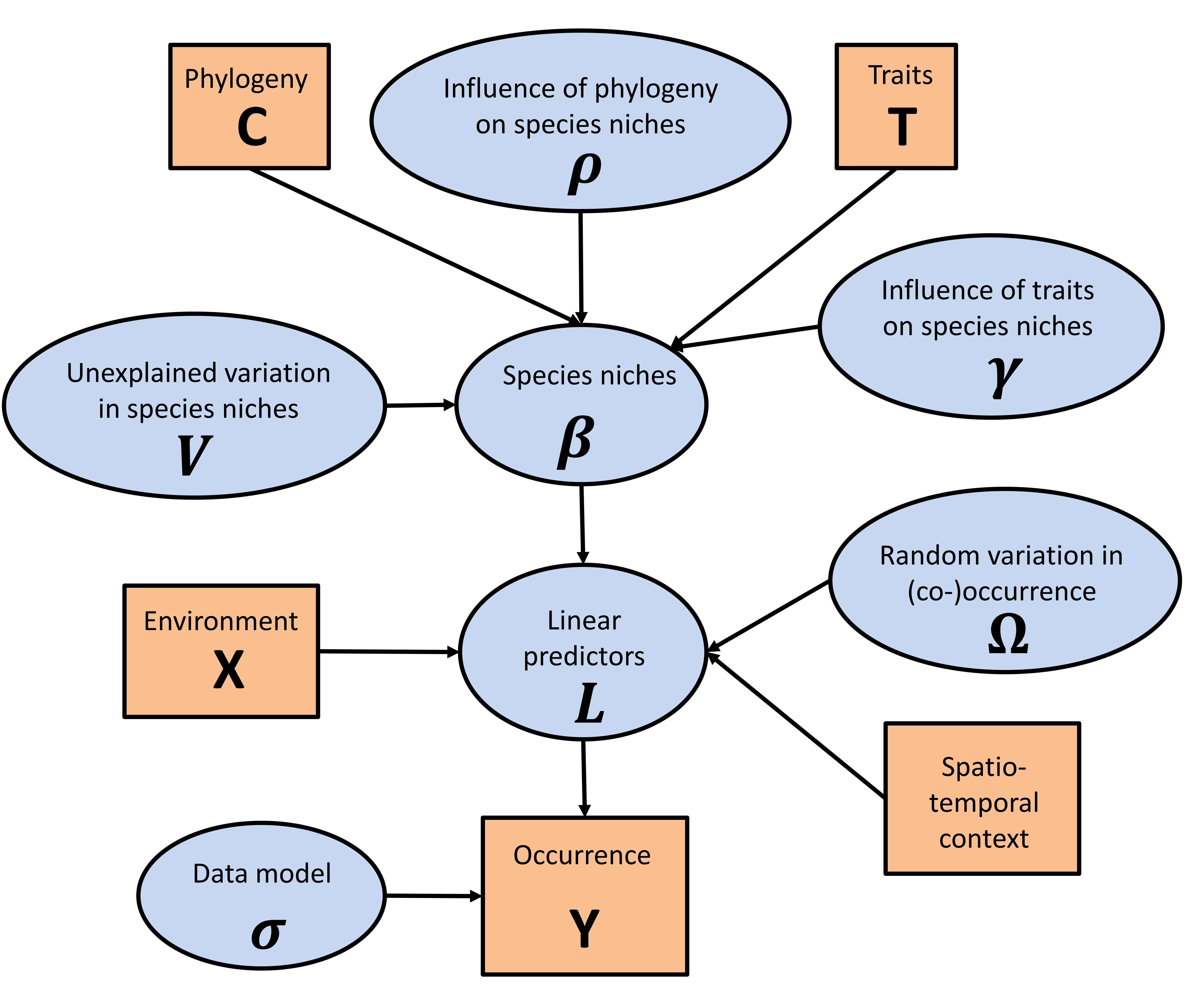 Hierarchical Modelling of Species Communities schematic picture