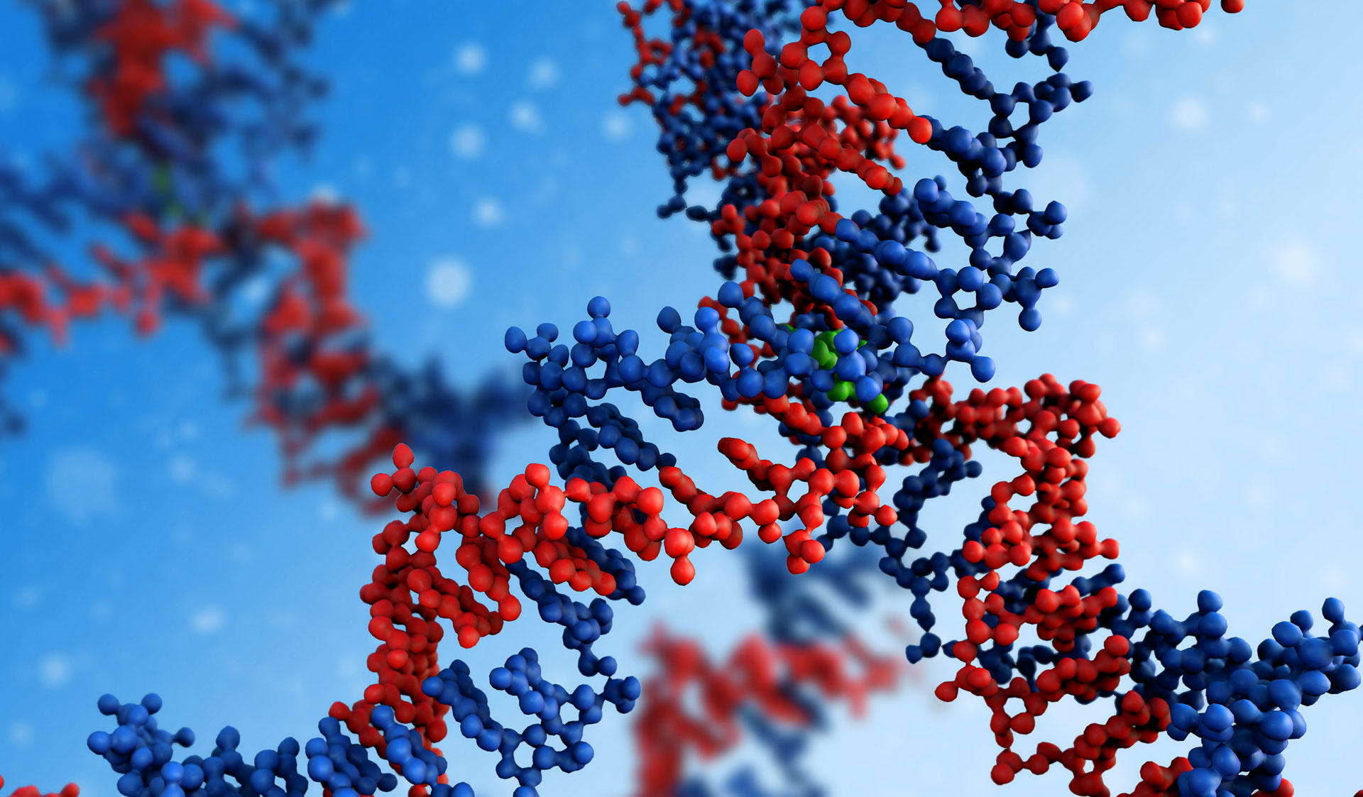 DNA chain in red and blue. Image of the Master's Programme in  Genetics and Molecular Biosciences at the University of Helsinki.