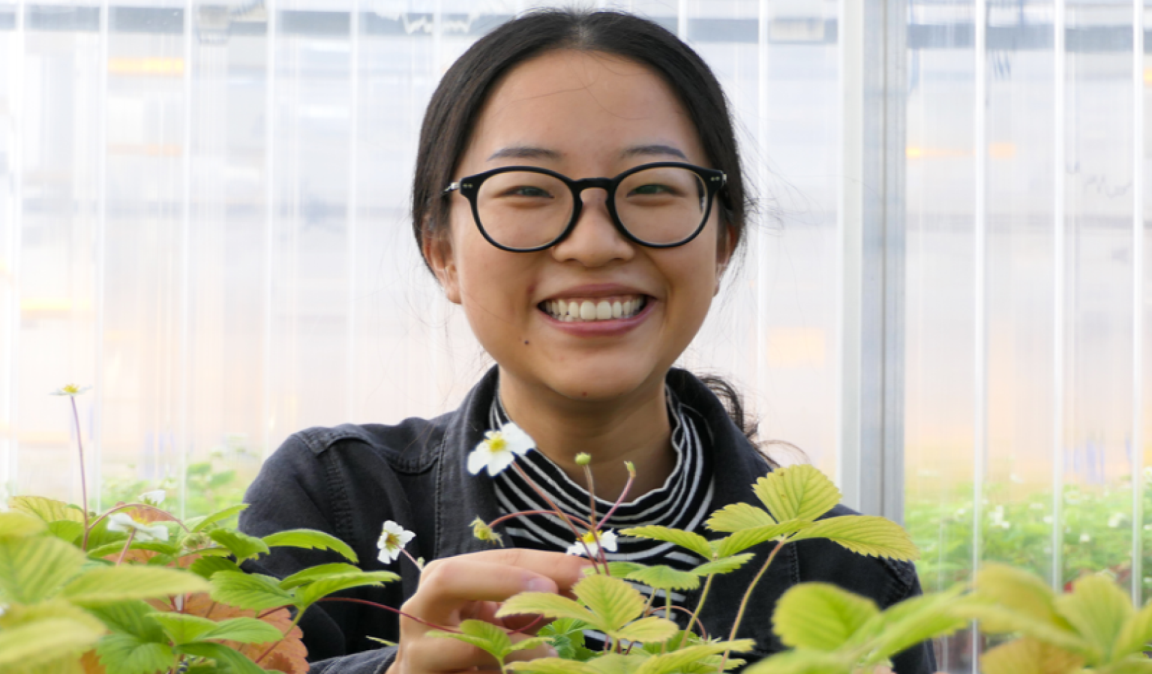 Kaiye Qin, Agricultural Sciences student