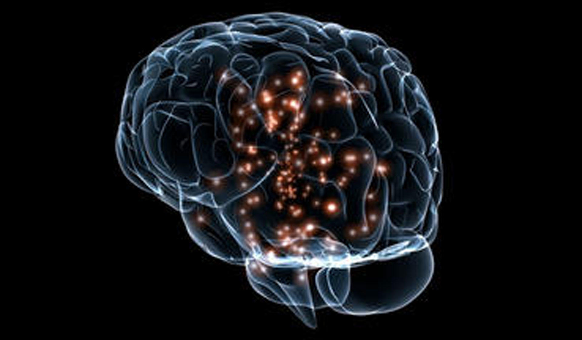 Transparent brains and lights. Image of the Master's Programme in Neuroscience at the University of Helsinki.