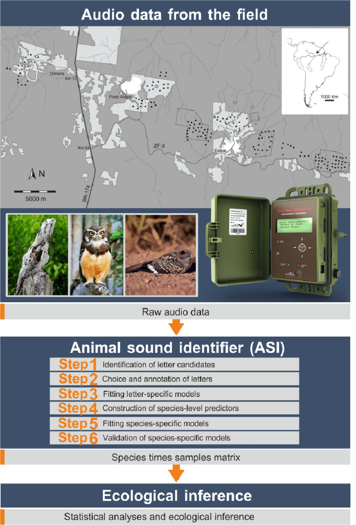 Ovasiakainen et al. (2018). Animal Sound Identifier (ASI): software for automated identification of vocal animals.