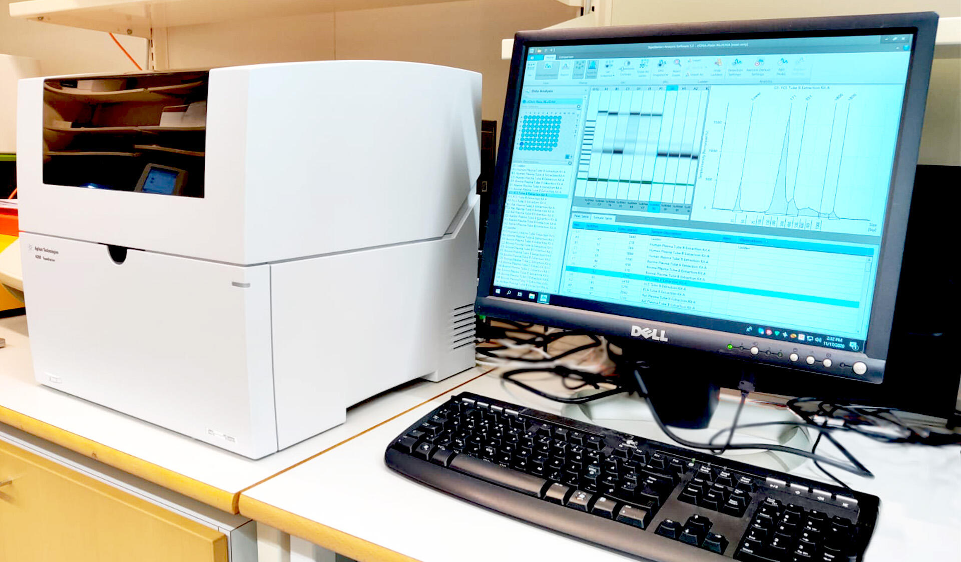 TapeStation is suitable to analyze size, quantity, and integrity of your samples.