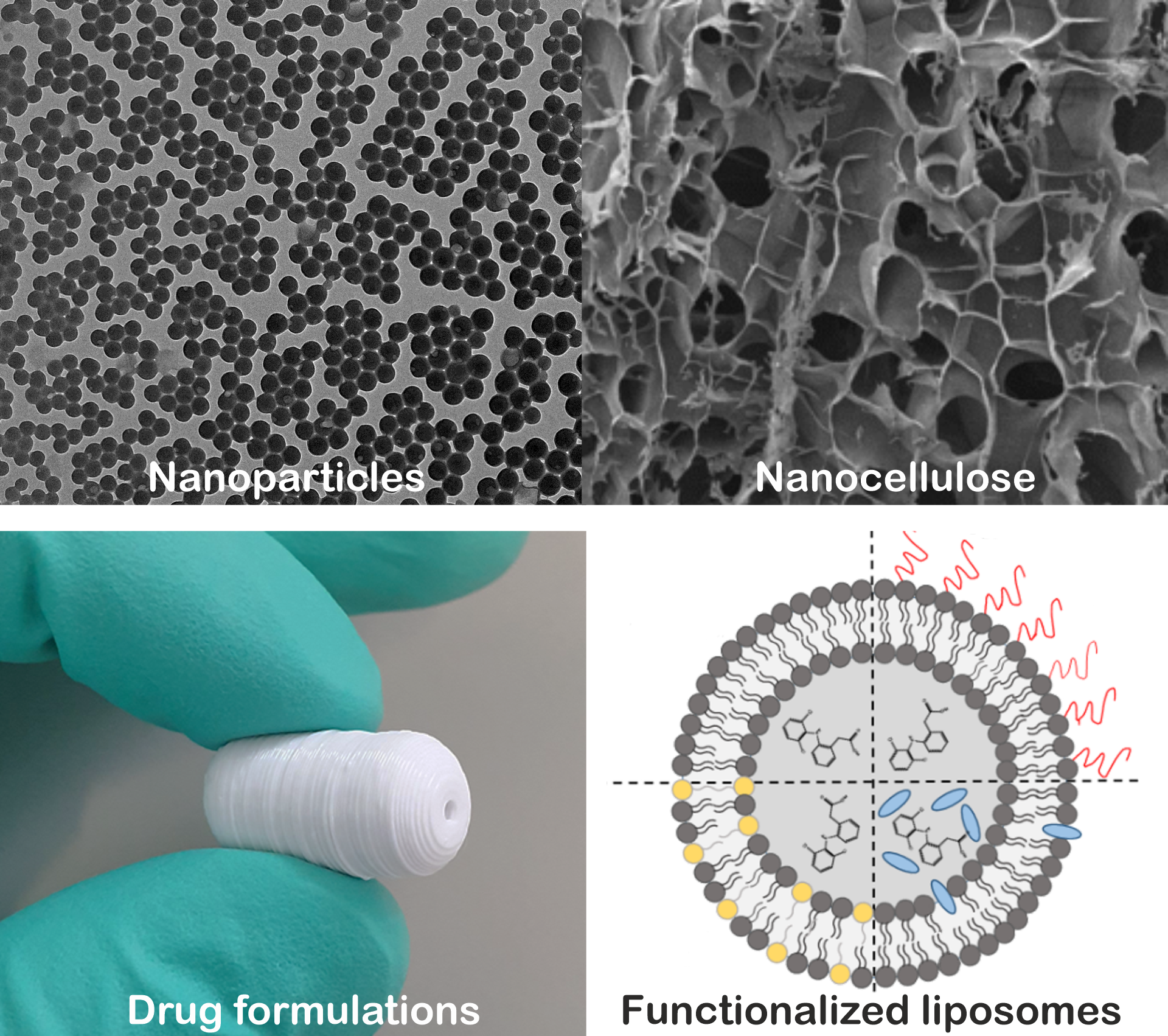 Materials studied include e.g. nanoparticles, liposomes, controlled release systems, and nanocellulose